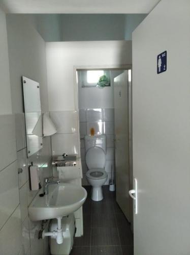 Kompletna adaptacija postojećih sanitarnih čvorova u Domu kulture u Dardi 3